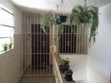 Apartamento - Coronel Veiga - petropolis